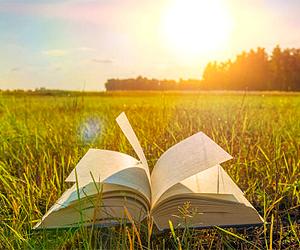 любовь к чтению